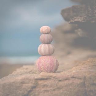 Cultivando o Equilíbrio Emocional
